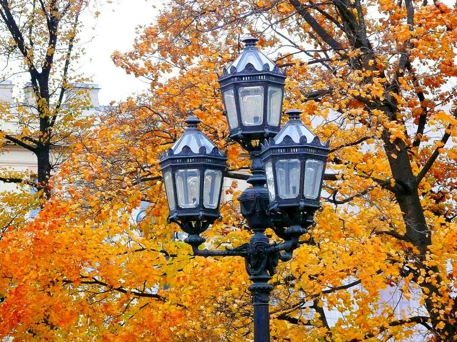 Осень В Городе Картинки
